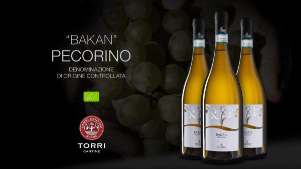 pecorino_bakan